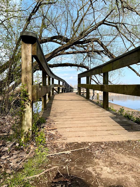 accessible boardwalk along tifft lake